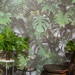 Tapete mit Philodendron