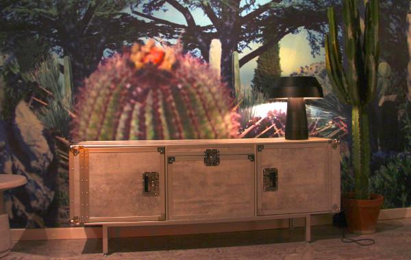 Tapete mit Kaktus