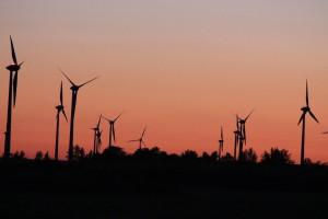 Windmühlen im Seewinkel